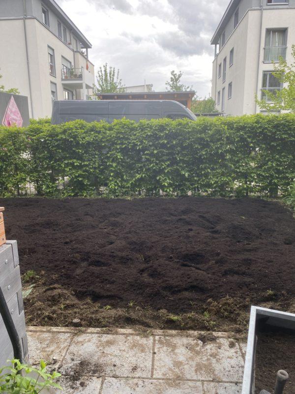 insektenfreudlicher Garten in Progress