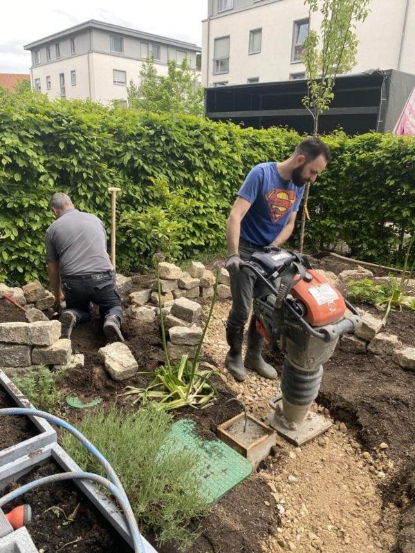 insektenfreundlicher Garten im Aufbau