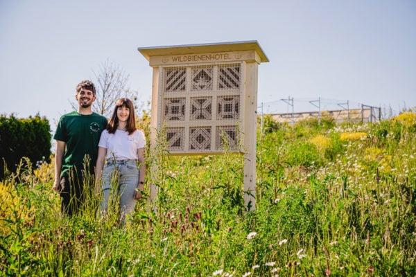 XXL Nisthilfe BienenTraum