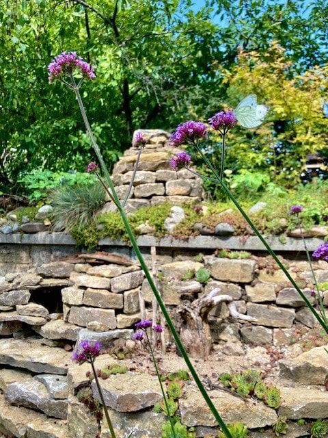 Garten Inspiration