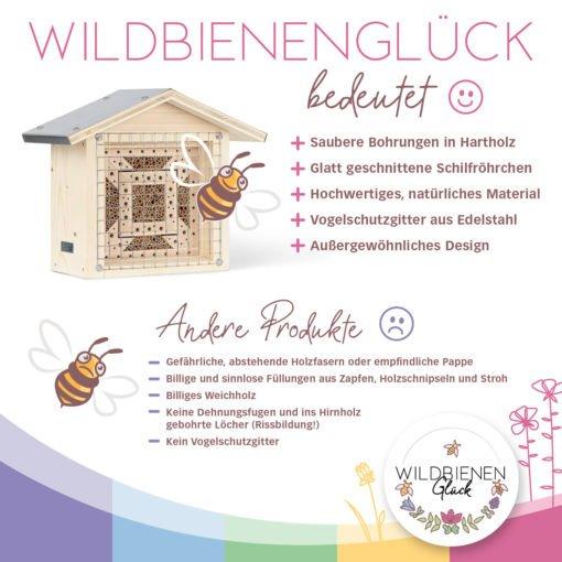 Wildbienenglu¦êck_BienenTempel_2
